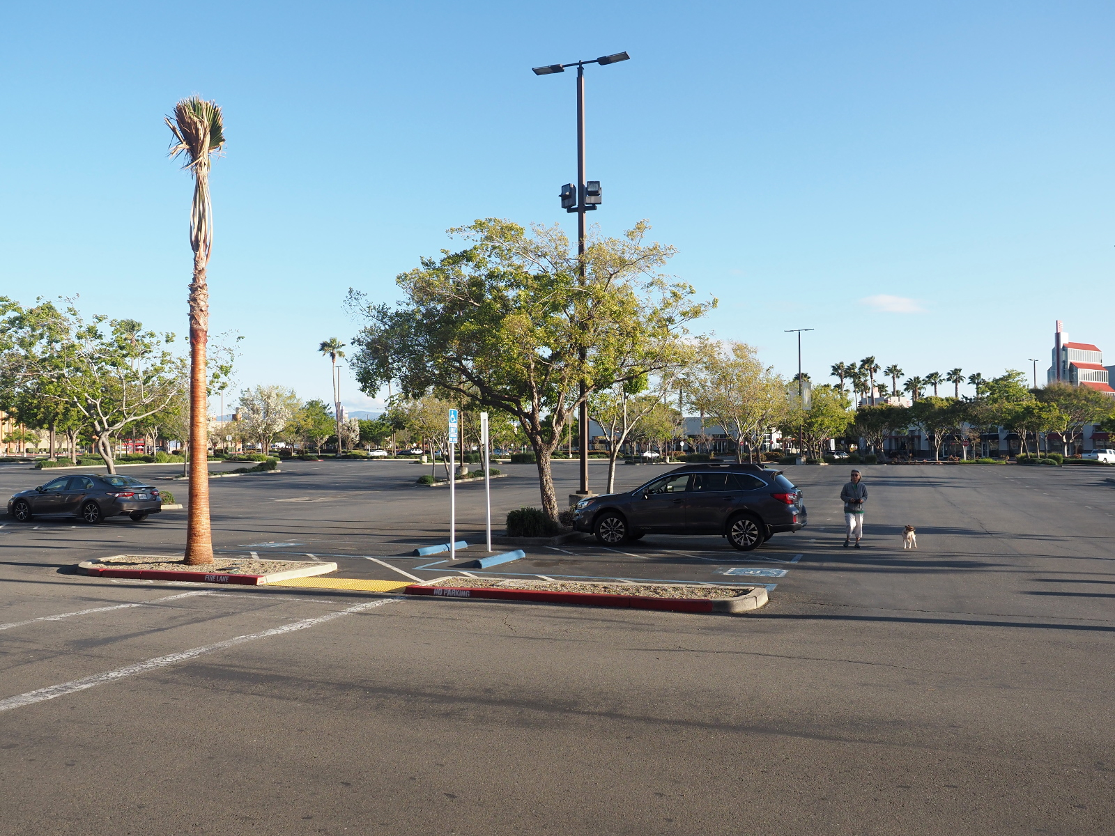 Deserted parking lot at a shopping center